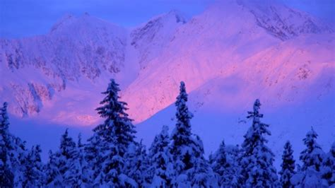 northern lights packages alaska 6 day northern lights overnight getaway package