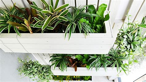 diy ideas how to build a vertical garden mitre 10