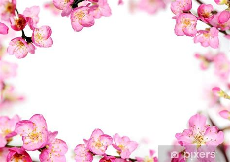 fototapete pfirsich blumen rahmen pixers wir leben