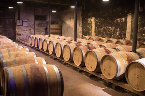 wine barrel storage free images wood red wine storage stock winery