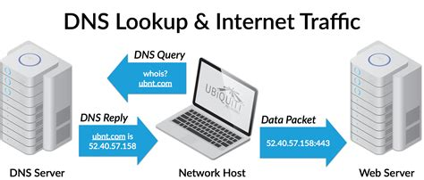 What Is Dns Lookup Intro To Networking Domain Name System Dns Ubiquiti