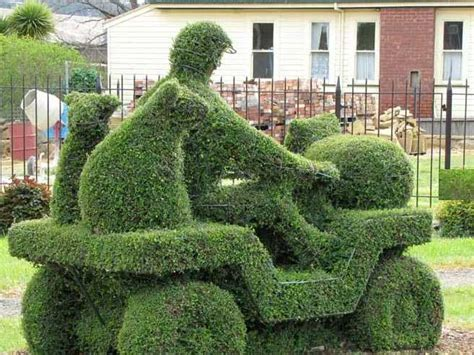 types of topiary trees landscape garden tips for topiary garden garden topiary