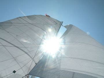 sailboats for sale miami daysailer sailboats for sale in miami florida