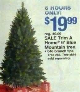 trim a home trim a home 6ft blue mountain tree at kmart
