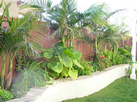 tropical backyard plants screen lower house blockwork tropical landscaping