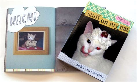The Stuff On My Cat Book by Stuff On My Cat