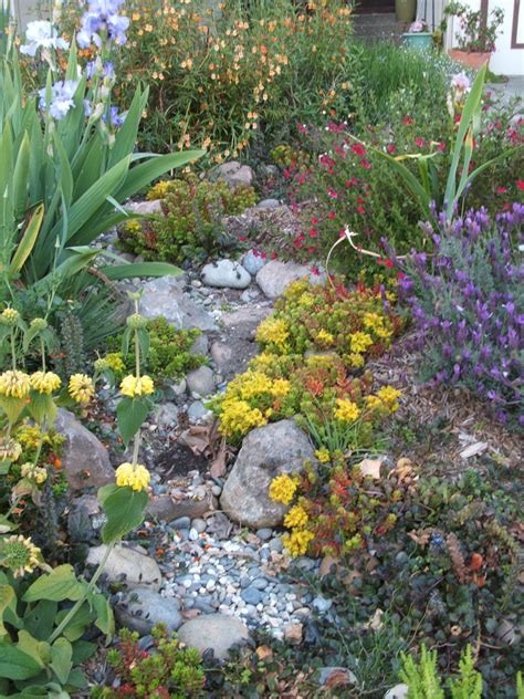 rain gardens monterey bay friendly landscaping