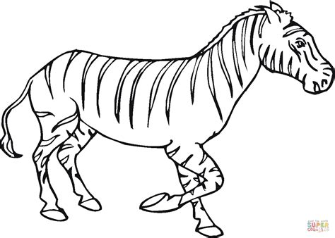 zebra 11 coloring page free printable coloring pages