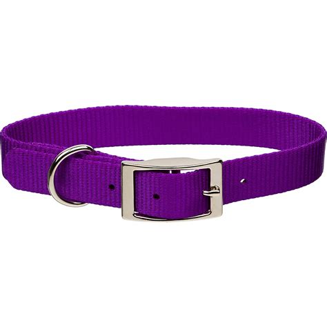 metal buckle collar coastal pet metal buckle personalized collar in purple 5 8 quot width petco