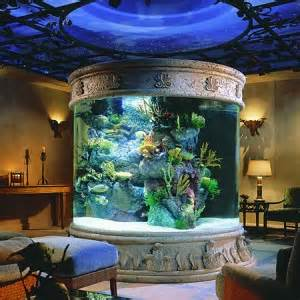 Why Use LED Aquarium Lights For Fish Tank   LED Grow Light Hydro Blog