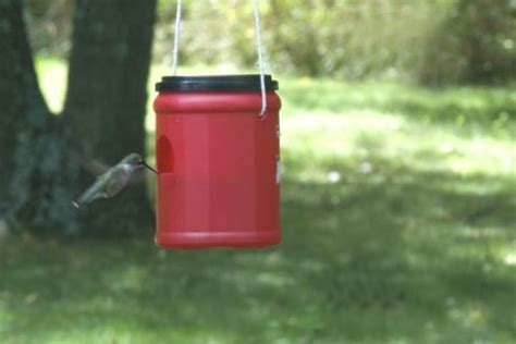 14 diy hummingbird feeders that ll be the buzz around your