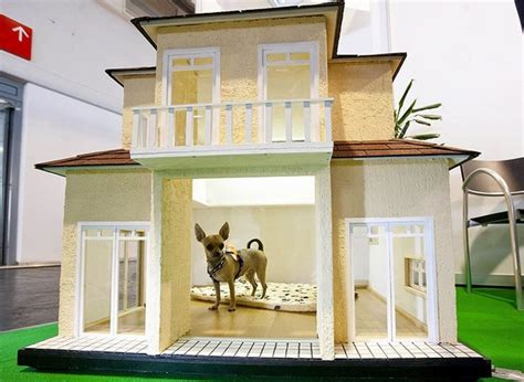two storey dog house adorable dog house designs for the comfortable living of our pets