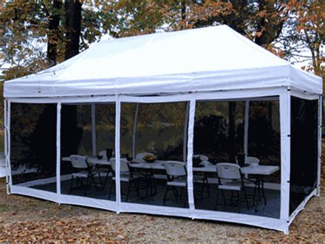 instant awnings king canopy instant canopy bug screen for 10 foot x 20