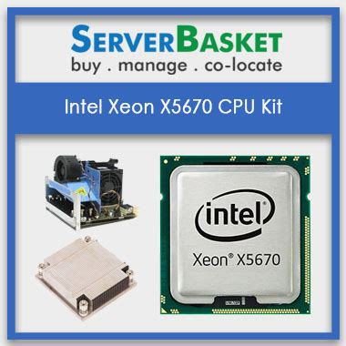 intel xeon best processor buy 2 93ghz 6 cores intel xeon x5670 processors with 12mb
