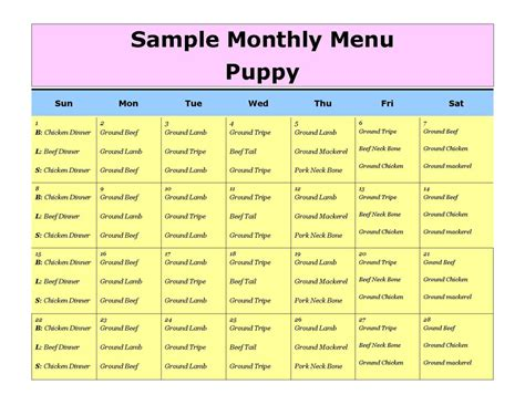 puppy schedule puppy schedule template hatch urbanskript co