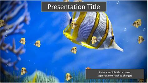 Free Colorful Fish Powerpoint Template 6248 Sagefox Fish Powerpoint Template