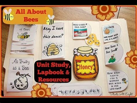 All About Bicycle 2 all about bees for