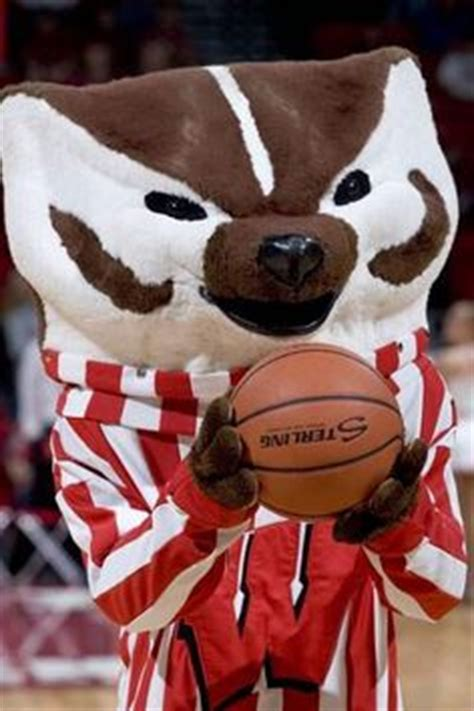 patten university mascot free wisconsin badgers iphone wallpapers install in