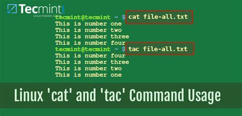 cat  tac commands  examples  linux