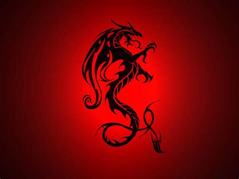 tattoo love backgrounds wallpapers dragon wallpapers
