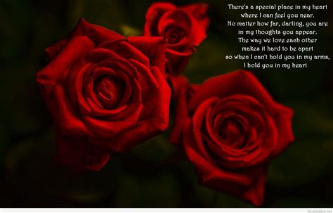awesome rose quotes