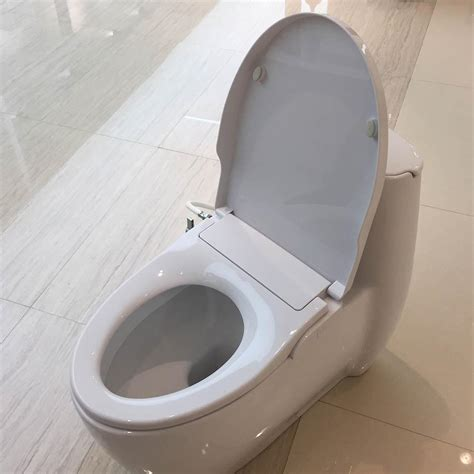 Bidet Style Toilet Seat by Hibbent Non Electric Bidets Seat Toilet Elongated Style