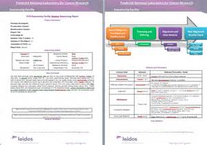 Data Quality Report Template data quality analysis and delivery ostr