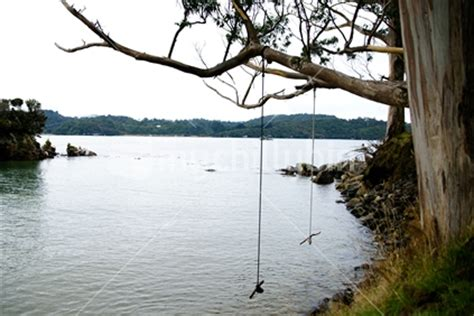 rope swing over water nz s most comprehensive range of images from 25 nz photo
