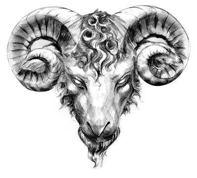 ram head tattoo designs rams search look book