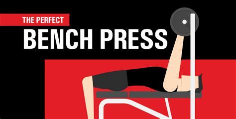 the perfect bench press the perfect bench press six star pro nutrition