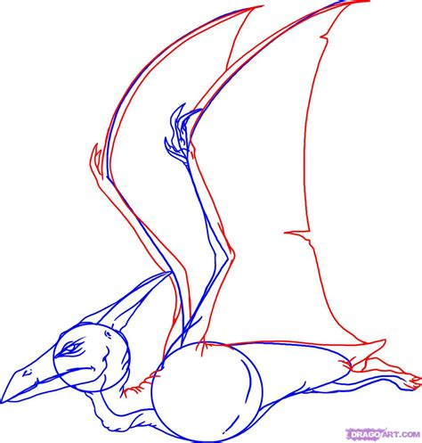 doodle drawing how to how to draw a pterodactyl step by step dinosaurs