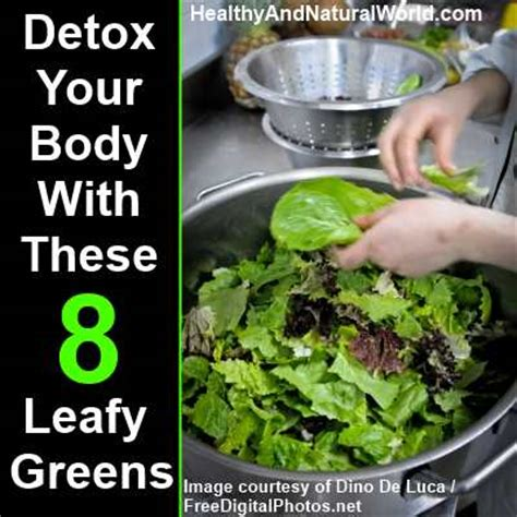 How To Detox Iron From Your by Detox Your With These 8 Leafy Green Vegetables