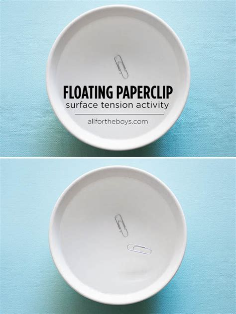 How To Make A Paper Clip Float - floating paperclip all for the boys
