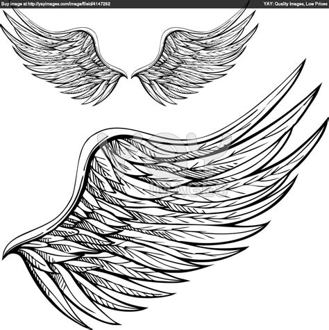 draw design free wings sketches royalty free vector of wings