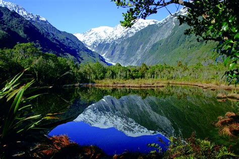 Search Nz Accommodation New Zealand Accommodation In New Zealand