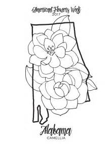 camellia flower coloring page 50 state flowers free coloring pages american flowers week