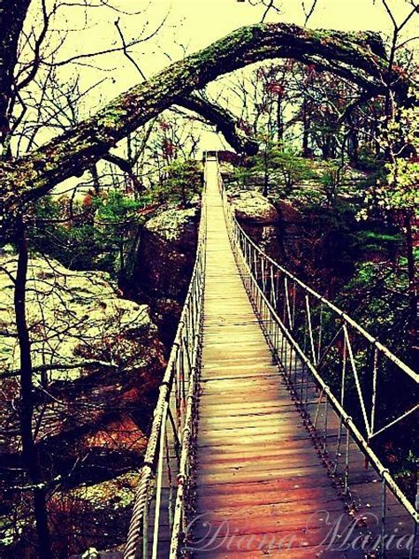 rock city swinging bridge rock city the swing along bridge places i have been
