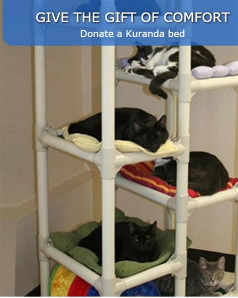 donate bed donate a bed