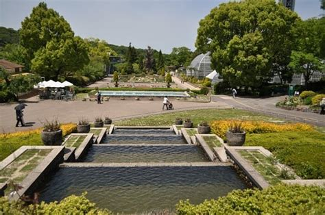 Higashiyama Zoo And Botanical Gardens Higashiyama Zoo Botanical Garden Nagoya Japan Hours Address Park Reviews Tripadvisor