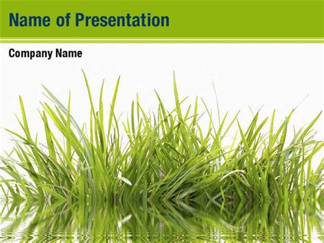 Grass Powerpoint Template green grass powerpoint templates green grass powerpoint