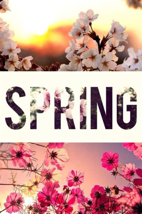 wallpaper tumblr spring image gallery hello spring tumblr background