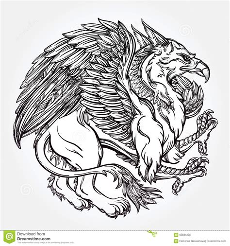 griffin beast illustration stock vector illustration of
