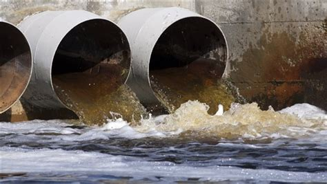 Garbage Collection Kitchener st lawrence sewage dump city releases test results