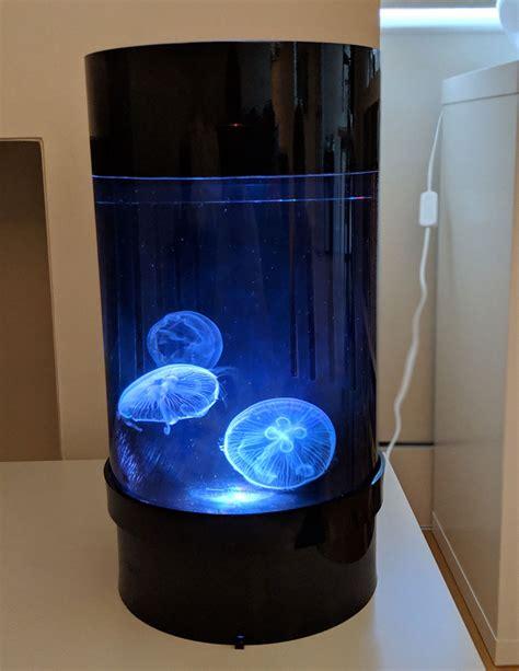jellyfish art cylinder nano pet jellyfish