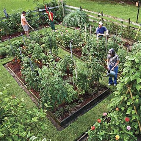 starting a backyard garden raise your own veggies gardens vegetables and backyards
