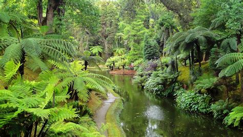 Terra Gardens by Top 10 Things To Do In San Miguel Azores Eat Sleep