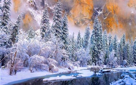 national tree snowy impearial winter yosemite national park river cold snow forest white trees nature landscape