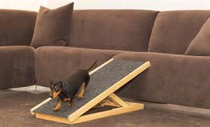 Dachshund Stairs Or Ramp by Dachshund Ramps Related Keywords Amp Suggestions Dachshund