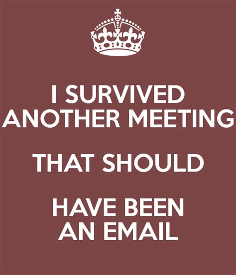 i survived another meeting that was about a meeting blank lined journal 6x9 gift for coworkers books i survived another meeting that should been an email