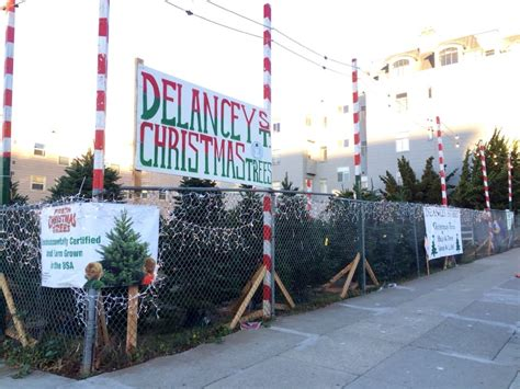 delancey street christmas tree lot 18 reviews